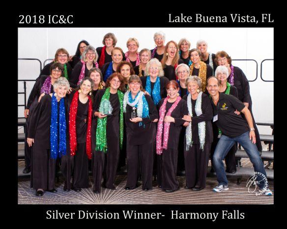 hf silver 2018